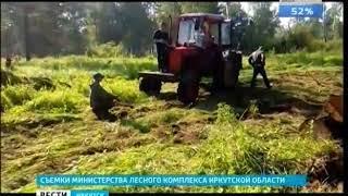 Прикинувшись туристами, лесники задержали «чёрных лесорубов» в Зиминском районе