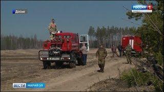 Более четырёх гектаров леса уничтожено огнём в Моркинском районе - Вести Марий Эл