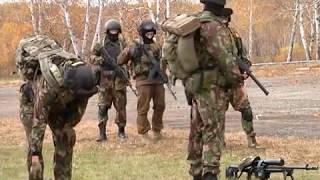 Бойцы СОБР Рогвардии ЕАО провели учения в полевых условиях(РИА Биробиджан)