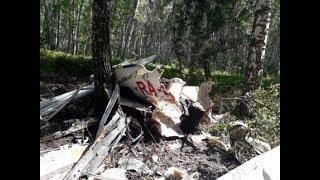 В Новосибирской области разбился легкомоторный самолёт
