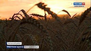 Губернатор обратился к аграриям с просьбой ускорить темпы уборочной