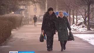 Синоптики рассказали, когда в Калининградской области потеплеет