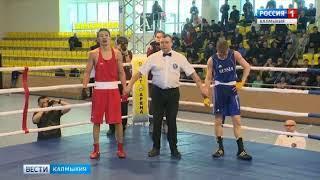 Чемпионат России по боксу среди студентов продолжается