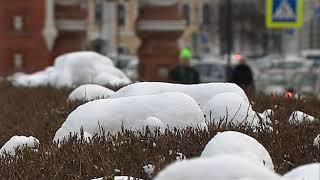 В выходные в Ярославской области потеплеет