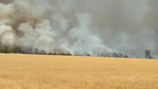 На Ставрополье вновь горят поля