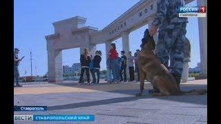 Росгвардия не дала скучать ставропольской детворе
