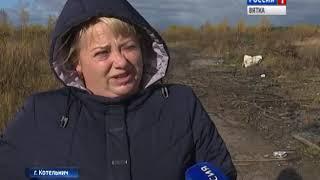 В Котельниче в некоторых районах отходы ТБО не вывозят уже полмесяца(ГТРК Вятка)