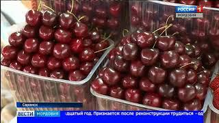 Центральный рынок Саранска стал одним из победителей Всероссийского конкурса «Торговля России 2018»