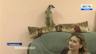 Жители Владивостока стали чаще заводить экзотических животных
