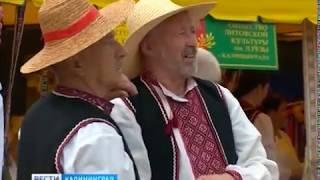 """""""Батькивщына"""" провела в Калининграде народное гулянье на Яблочный Спас"""