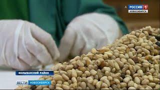 Ореховый Спас отмечают православные новосибирцы