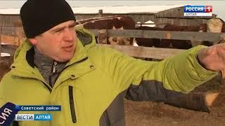 В Алтайском крае объявили приём заявок на поддержку начинающих фермеров и семейных хозяйств