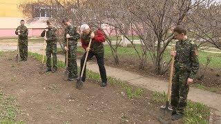 Волгоградские кадеты высадили саженцы деревьев
