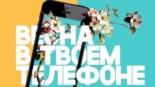 Впервые на «Студенческой весне» югорчане представят свои микрофильмы
