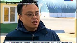 Амурскую пшеницу тоннами скупает Китай