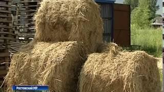 В регионе заканчивается прием заявок на гранты для развития фермерского хозяйства
