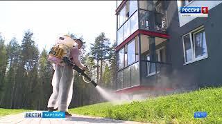 В Петрозаводске продолжается противоклещевая обработка парков