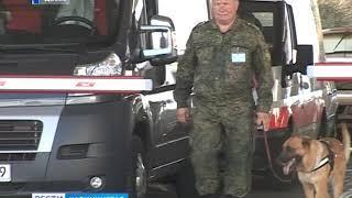 Калининградская таможня отчиталась об итогах деятельности