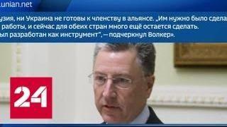 Курт Волкер: Киев и Тбилиси не готовы к вступлению в НАТО - Россия 24