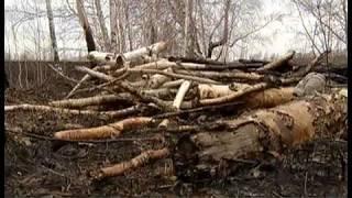 Жаркая весна 18-го. Лесные пожары едва не уничтожили деревню на окраине Челябинской области