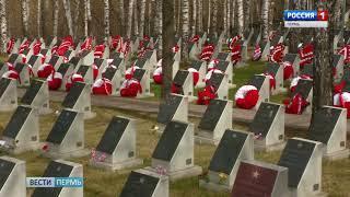 Ничего святого: в Перми с могил солдат украли венки