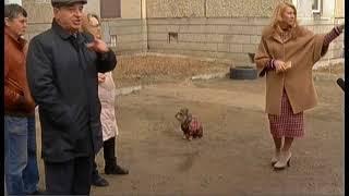 Детскую площадку, которую поставили жильцы одной из челябинских многоэтажек, снесут