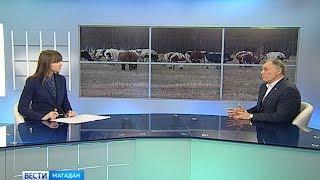 Проблемы и достижения сельского хозяйства Колымы – интервью с министром