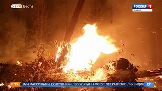Погода в Алтайском крае способствует возникновению пожаров в лесах