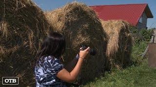Видеоблог уральского фермера набирает популярность у иностранцев