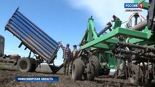 Новосибирские аграрии смогут получить дополнительную поддержку