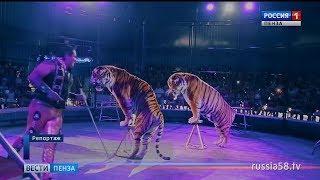 Пензенцы смогут увидеть уникальное цирковое шоу мирового уровня