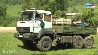 Непарный шелкопряд грозит лесам РА