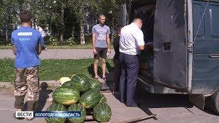 В Вологде арестовали нелегальную партию арбузов