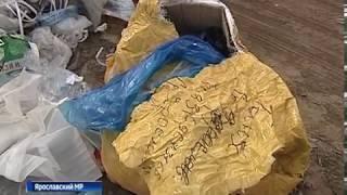 В Заволжском районе Ярославля обнаружили очередную несанкционированную свалку