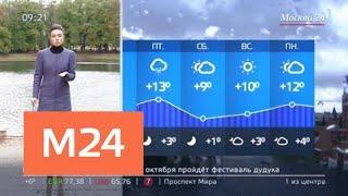"""""""Утро"""": ветреная и дождливая погода ожидается в Москве 27 сентября - Москва 24"""
