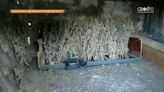 Крупную партию наркосодержащего мака изъяли новоалександровские полицейские