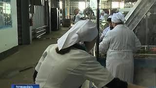 Ростовская область получит более миллиарда рублей субсидии