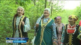 Жители одной из башкирских деревень ежегодно собирают травы для чая