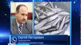 Потеряв российский рынок, Латвия и Эстония снизили производство консервов