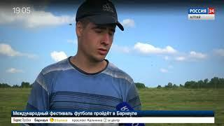 В Алтайском крае началась уборка льна