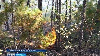 Леса горят на Колыме