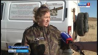Возобновлен поиск останков солдат в Яшкульском районе