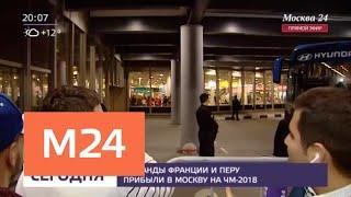 Футболисты из Франции и Перу прибыли в Москву - Москва 24