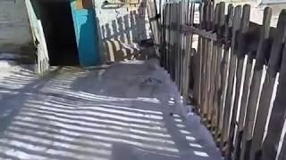 В Челябинской области ветеран труда живет в доме без воды, канализации и отопления 2