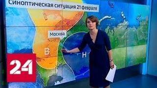 """""""Погода 24"""": в столице из-за морозов объявили оранжевый уровень опасности - Россия 24"""