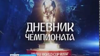 Калининградские «Вести» собрали воедино всё интересное о ЧМ-2018 в городе