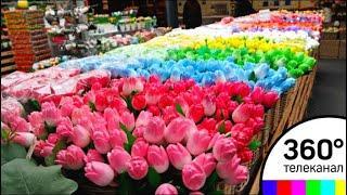 Москвичей призвали не покупать цветы на уличных развалах