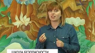 В Белгороде начала работу медиашкола по детской дорожной безопасности