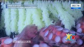 Уникальные кадры «Заповеданного моря» смогут увидеть зрители телефестиваля «Человек и море — 2018»