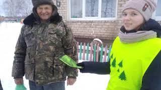Белогостицкие школьники призывают не вырубать елки